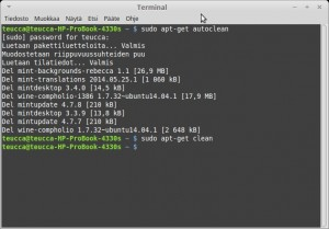 BleachBit Siivous Cleaning 2-Terminal