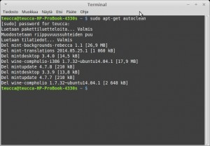 BleachBit Siivous Cleaning-Terminal