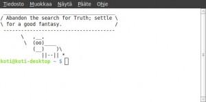 Pääte (terminaali) näyttää tältä käynnistettynä. Päätteen avulla voidaan asentaa tai käynnistää sovelluksia (jopa useita ohjelmia kerralla), päivittää tai korjata niitä, yleisesti ottaen kaikkea mitä tietokoneeseen tarvitsee tehdä. Toisin sanoen päätteen komentoriviltä merkkipohjaisesti. Graafisen (objektipohjaisen) sovelluksen avulla ei pysty kaikkea tekemään!
