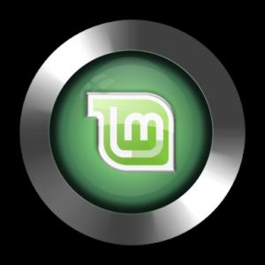 Linux Mint asennusohjeet